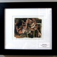 aston-amarylis-apple-blossom-4-etching-395