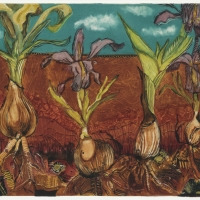 soil-landscape-with-irises