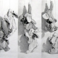 after-muybridge-no-1-elephant-ascending-rabbit-descending-while-tethered-22in-x36in-graphite-on-paper-1850