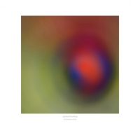 01_painted-bunting-copy