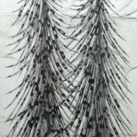 lpy-two-porcupine-tree-ink-drawing-2009